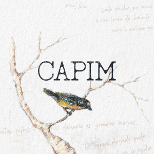 Capa álbum Capim